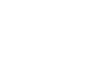 Data Engineering Services